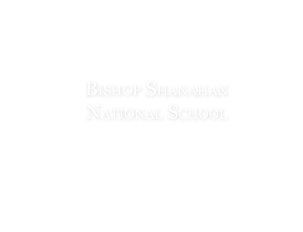 Bishop Shanahan National School Images