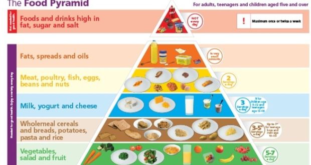 Media Library - food pyramid new